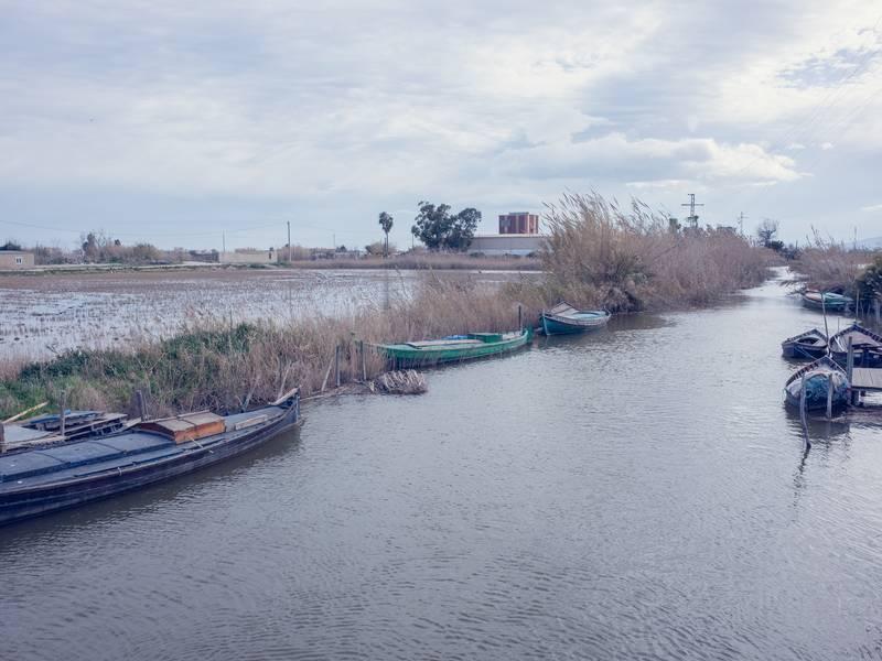 Risodling och kanal i Albufera