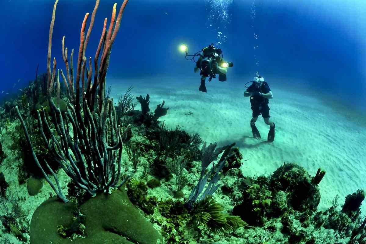 Två dykare